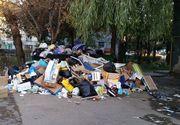 Orasele Romaniei devin focare de infectie! Oamenii arunca gunoiul pe unde apuca, fara sa le pese!