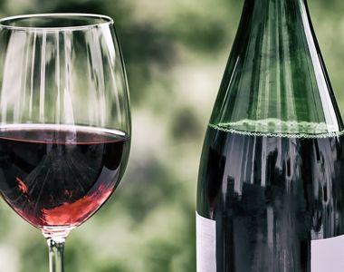 Primul festival digital de vinuri din Romania se tine la Snagov! Iata ce puteti vedea...