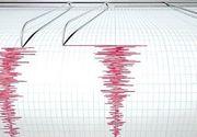 Cutremur de 6,7 în largul Oceanului Pacific. Ce spun reprezentanţii Institutului American de Geofizică