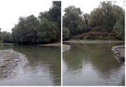 """Situaţie dramatică în Delta Dunării! după ce nivelul apei a scăzut! """"Totul este mort!"""""""