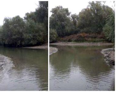 """Situaţie dramatică în Delta Dunării! după ce nivelul apei a scăzut! """"Totul este..."""
