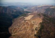 Proiect de lege propus de UDMR: liber la defrişat păduri, dacă se construiesc în loc pârtii de schi!