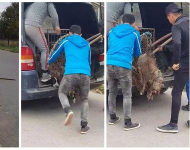 Hingherii din Eforie Nord surprinşi în timp ce maltratează câinii comunitari! Imagini...