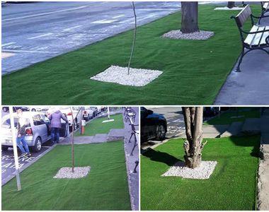 IREAL! Mochetă pe asfalt, în loc de spaţiu verde într-un municipiu din România!...