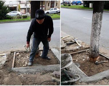 Dorel de Oltenia! Au ciopârţit copacii de pe marginea drumului, pentru a putea monta...