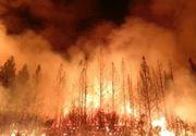 Incendiul din California continuă să facă ravagii! Vedetele din zonă au sărit în ajutorul comunităţii
