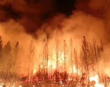 Incendiul din California continuă să facă ravagii! Vedetele din zonă au sărit în...
