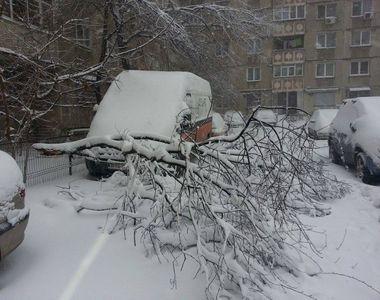 Prima zăpadă în Capitală, primele probleme. Copaci căzuţi pe maşini şi întârzieri pe...