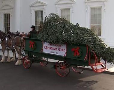 Pregătiri pentru Crăciun la Casa Albă! Donald Trump a întâmpinat bradul care urmează să...