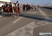 Cei 100 moroşeni călare, umiliţi la Alba Iulia, după ce au străbătut 300 km pe cai cu ocazia Centenarului