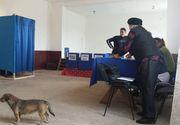 Localitatea unde prezenta la vot a fost de 179% pana la pranz. Care este explicatia