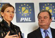 Alina Gorghiu si Vasile Blaga au imprumutat PNL-ul cu cate 45.000 de lei pentru campania electorala