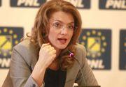 """Alina Gorghiu, PNL: """"PSD, cel mai mitoman partid din ţară, dă startul unei campanii electorale de prost gust"""""""