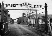 """Un fost gardian de la Auschwitz, in varsta de 94 de ani, este judecat azi pentru complicitate în uciderea a cel puţin 100.000 de evrei: """"Imi e rusine"""""""