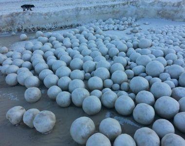 Fenomen ciudat in nord-vestul Siberiei. Mii de bulgari uriasi de zapada au invadat plaja