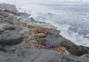 Mii de oua Kinder, aduse de maree, pe o plaja din Germania