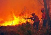 Portugalia a declarat trei zile de doliu national; bilantul incendiului de vegetatie a crescut la 62 de morti
