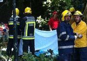 Tragedie in Portugalia! 12 persoane au murit zdrobite de un copac care a cazut peste ele si alte 52 au fost ranite