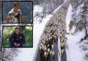 De ce au fost ucisi cei doi tineri ciobani romani in Italia! Adevaratul motiv al asasinatului este ingrijorator