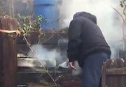 Incendiile de vegetatie din California fac prapad. Mii de oameni, evacuati de urgenta