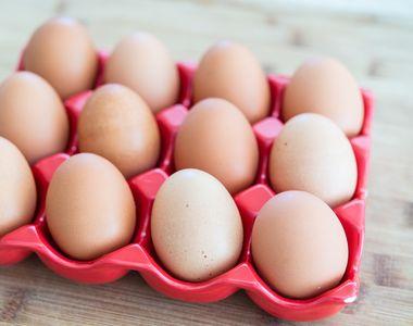 Vezi cum iti poti da seama ca ouale pe care la cumperi provin de la o gaina bolnava!