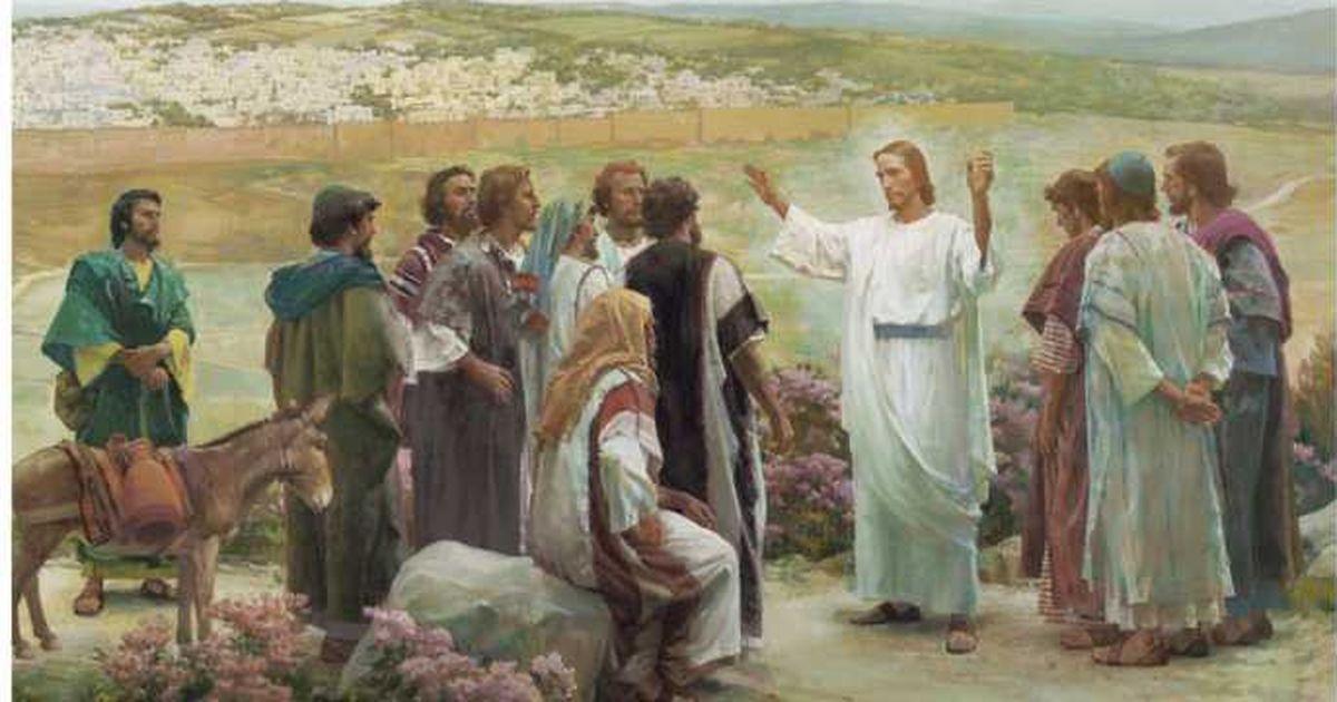 """Apostolii lui Iisus il numeau """"copacul vietii""""! Care este cel mai bun  remediu antic! Acum se gaseste peste tot si e super ieftin! - Stirile Kanal  D"""
