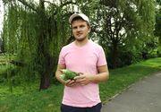 """Un oradean a dat lovitura pe piata agricola cu """"insulina verde"""". Un kilogram se vinde si cu 50 de lei"""