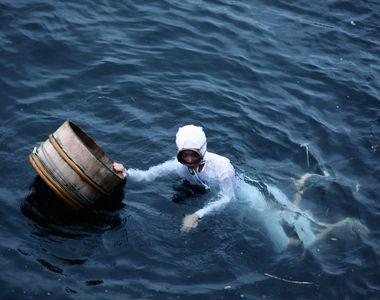 Un scufundator a facut descoperirea vietii lui. A ramas mut de uimire cand a desfacut o...