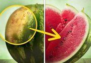 Cum alegi pepenele perfect. Acestea sunt semnele la care trebuie sa fii atent. Daca vei tine cont de ele, poti fi sigur ca l-ai ales pe cel mai dulce