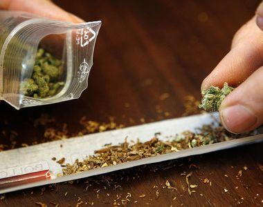 Dupa 20 de ani de studiu s-a stabilit: marijuana dauneaza grav sanatatii. Efectele...
