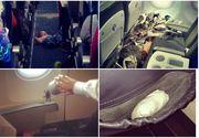 Acestea sunt cele mai ciudate lucruri pe care insotitoarele de zbor le-au vazut in viata lor! E socant ce au reusit sa faca acesti oameni in avion