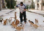 Toata lumea fuge din orasul devenit ruina dupa bombardamente, dar acest barbat a ramas sa aiba grija de pisicile abandonate