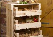 Legumele si fructele pot fi pastrate pana tarziu in iarna. Horticultorii ne invata cum sa procedem pentru a ne bucura cat mai mult de fructe si legume proaspete