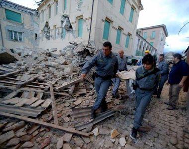 Ei sunt adevaratii prezicatori ai cutremurului. Animalele care simt dezastrul. Nu este...