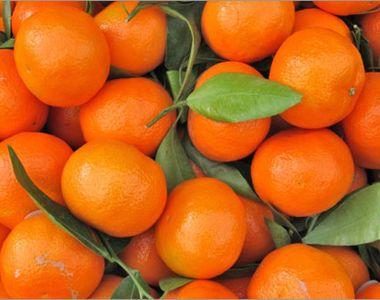 Secretul clementinelor din supermarket. Uite ce trebuie sa stii despre ele