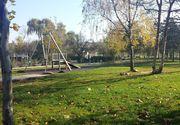 Baietel de doi ani, gasit singur in parc. El era dezbarcat si inconjurat de o haita de caini