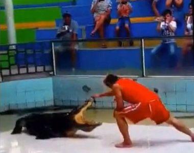 S-a asezat in fata unui crocodil de trei metri si a bagat mana in gura lui. Apoi, ceva...