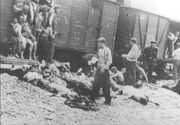 """Cum aratau """"trenurile mortii""""! In aceste convoaie au murit sute de mii de evrei!"""