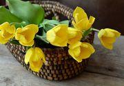 Cele mai frumoase mesaje de Florii. Ce urari le puteti face celor care isi sarbatoresc astazi onomastica