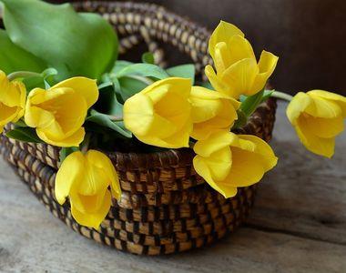 Cele mai frumoase mesaje de Florii. Ce urari le puteti face celor care isi sarbatoresc...