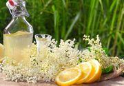 Secretul unei socate delicioase si parfumate