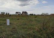 ANAF-ul face lucruri trasnite! Cum au pus angajatii primariei anuntul de vanzare a unui teren din Brasov