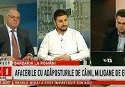 """Daniel Nicolaina, jurnalistul Stirilor Kanal D, prezent in studioul B1 TV, in cadrul emisiunii """"Dialoguri incomode""""! Dezvaluiri socante despre adaposturile de animale si afacerile cu caini comunitari"""