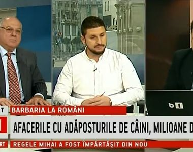 Daniel Nicolaina, jurnalistul Stirilor Kanal D, prezent in studioul B1 TV, in cadrul...