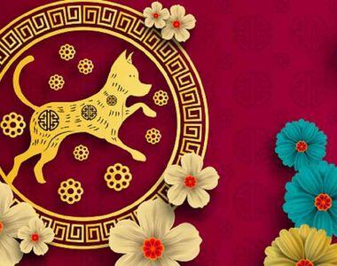 Horoscop CHINEZESC 2018. Ce aduce Anul Cainelui de Pamant pentru toate zodiile