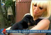Raluca Badulescu, impresionata pana la lacrimi. Vedeta a facut o vizita cateilor de la adapostul Sectorului 1