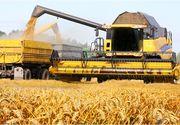"""Un milion de hectare din suprafata arabila a Romaniei sunt controlate de straini! """"Trebuie facute legi care sa incurajeze arenda!"""""""
