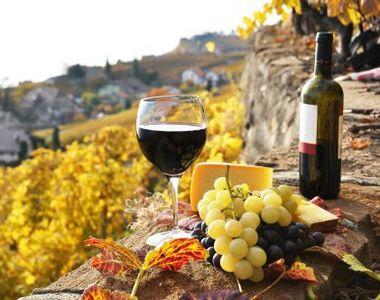 Vinurile romanesti, la mare cautare in strainatate! Exportam anual aproape 14 milioane...