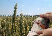 Guvernul a majorat subventiile acordate in 2016 pentru motorina din agricultura