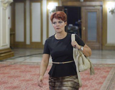 Lia Olguta Vasilescu spune ca are nevoie de 15 miliarde de lei pentru a sustine noua...